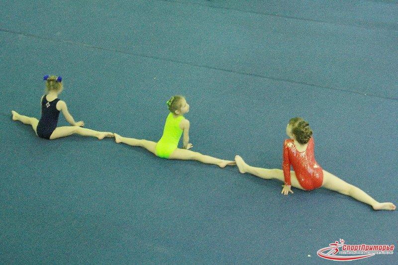 Гимнастика спортивная.